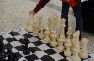Schach_Website